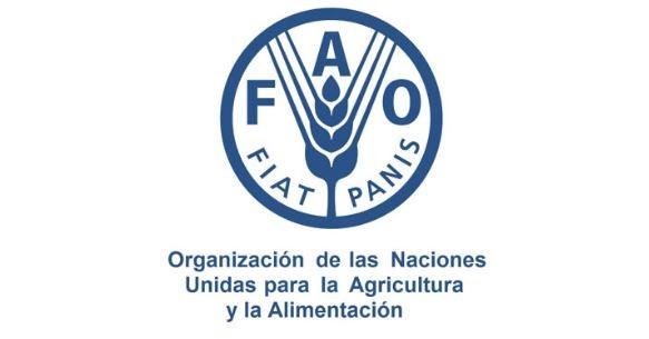 聯合國糧農組織
