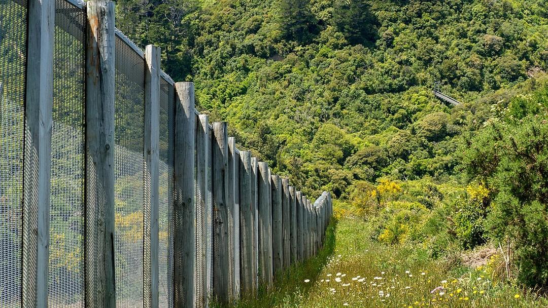 紐西蘭野生動物保護區 Zealandia